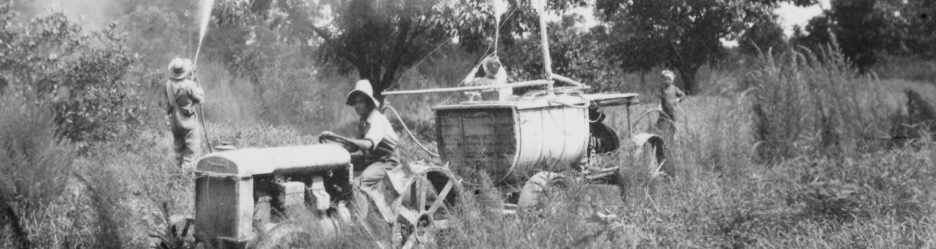 Old black and white photo of spraying crops