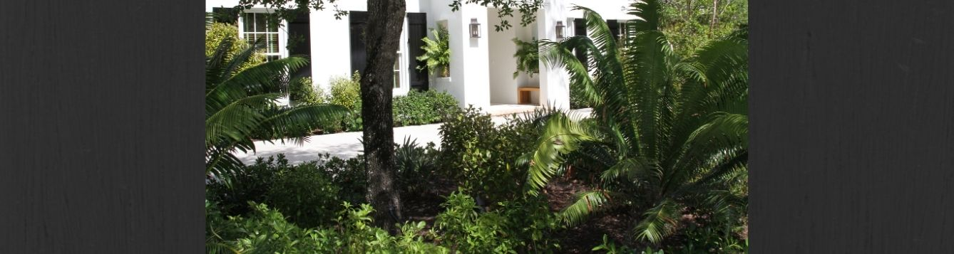 Florida-Friendly Landscape maintained by licensed landscape professionals. Pesticide and fertilizer applicators must be licensed.