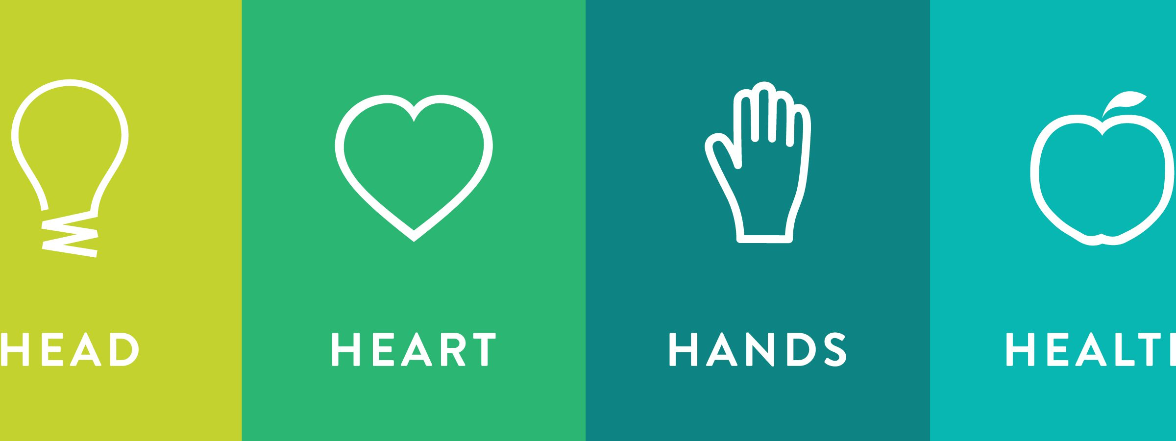 Head Heart hands health banner