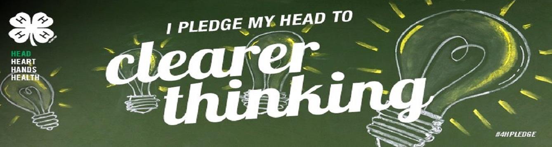 I pledge my head to clearer thinking