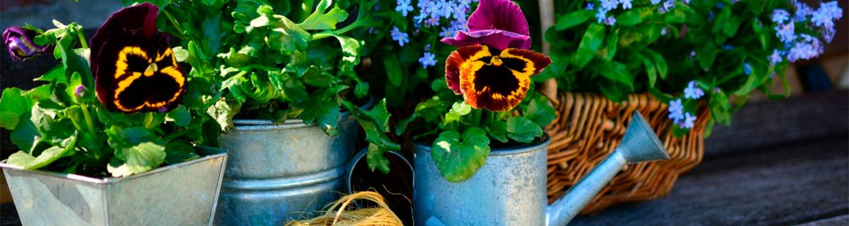 Gardening Monthly Checklist