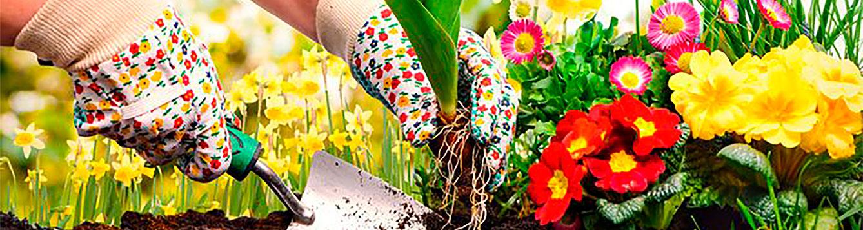 Spring Plant Sale Banner 2018