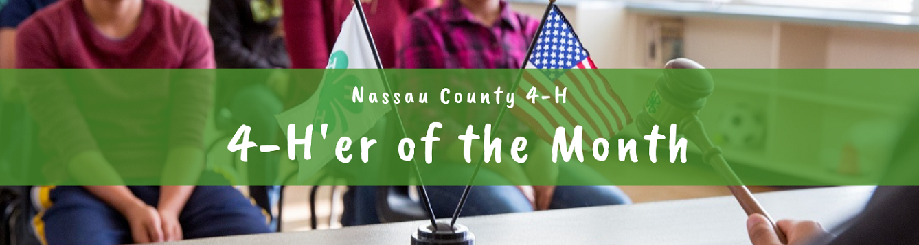 4-H'er of the month logo and flag set