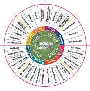 life skills wheel