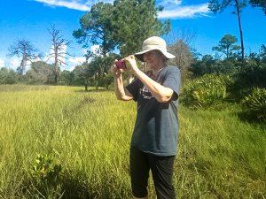 Cedar Key Bird Rescue volunteer Anne Lindgren photographs a bird release event