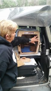 person opening a cage
