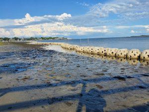 Concrete reefs line a mud flat