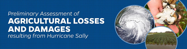 Hurricane Sally impacts preliminary