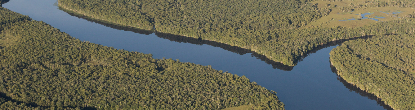 Aerial view of Suwannee River