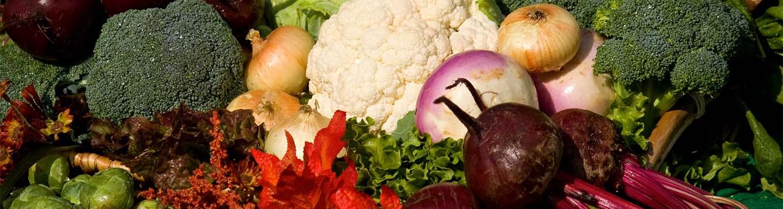 image- winter garden vegetables