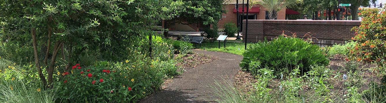 path through garden in downtown Orlando