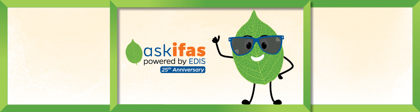 A leaf cartoon with a wide smile and sunglasses