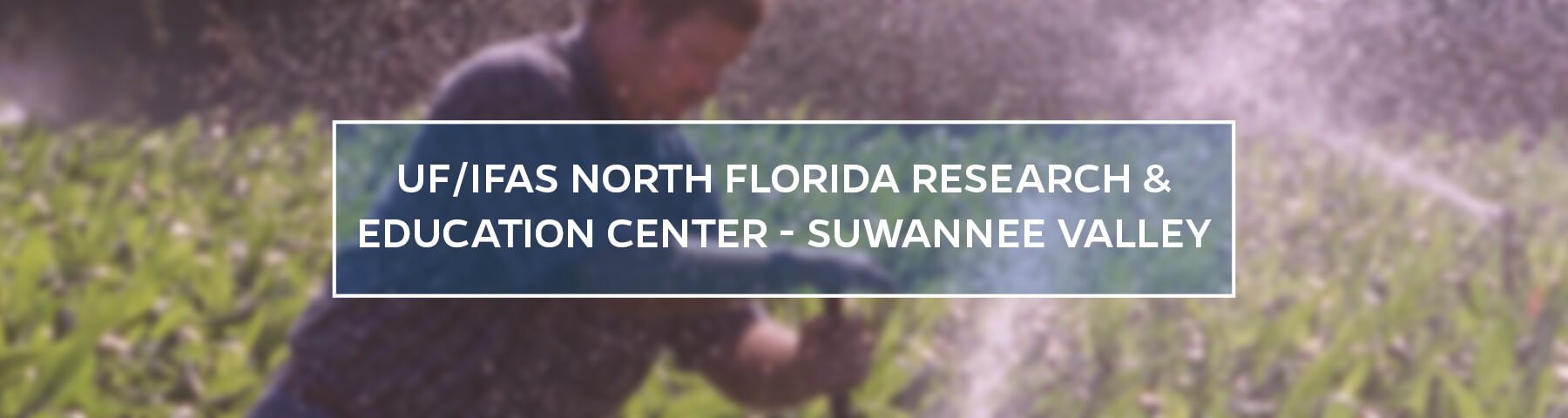 UF/IFAS North Florida Research and Education Center - Suwannee Valley
