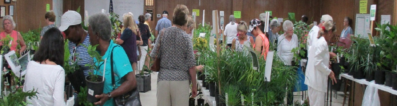 People shopping at indoor Master Gardener Volunteer plant sale