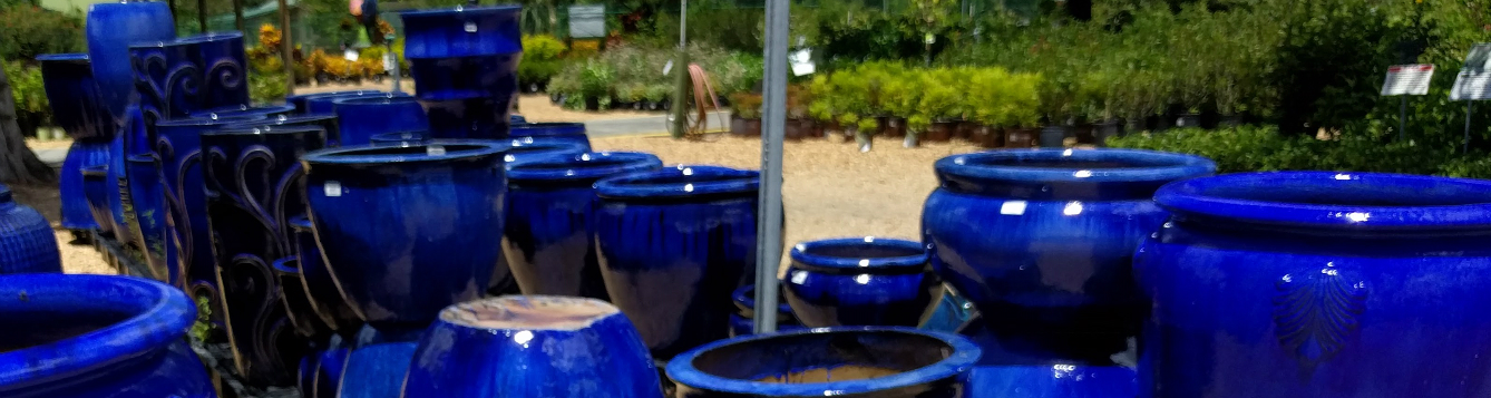 blue plant containers