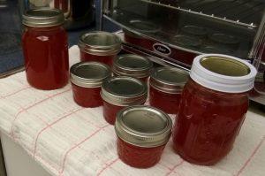 flatwod plum jam in jars