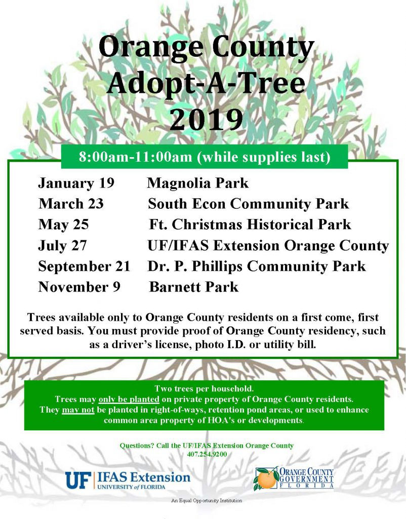 Tree Give Away flyer 2019