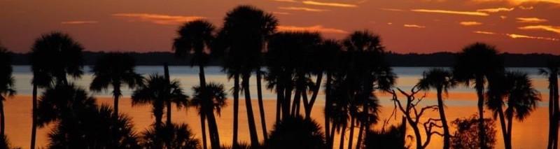 Florida sunset silhouette