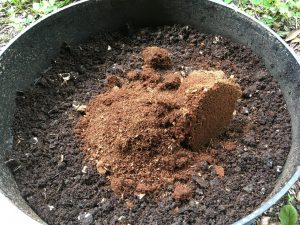 worm bin with coir