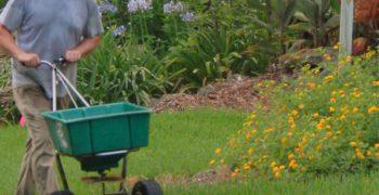 guy spreading fertilizer