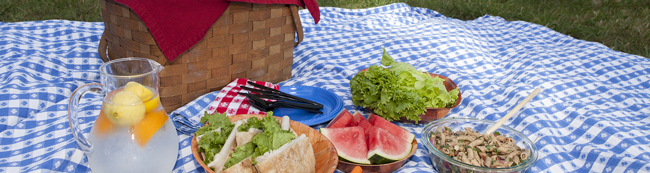 Lunch, carrots, watermelon, and salad sit on a table cloth with a picnic basket.