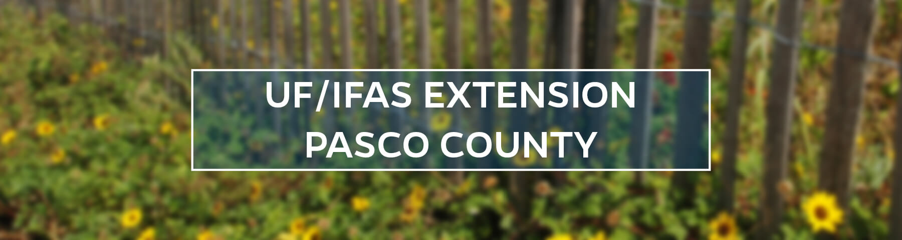 UF/IFAS Extension Pasco County