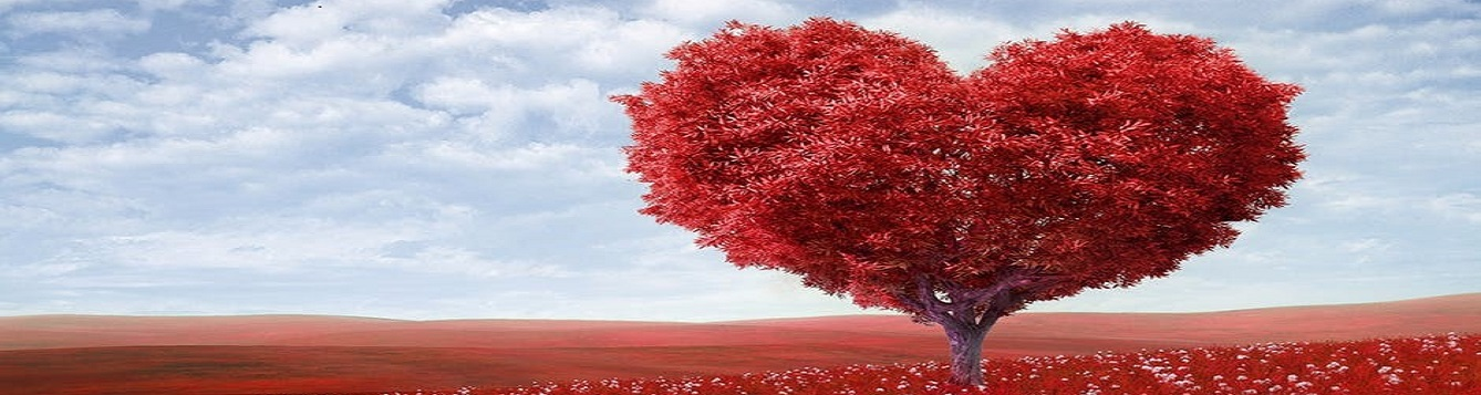 A tree with red leaves, with the branches in the shape of a giant heart.