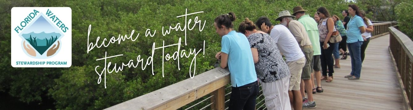 Past program participants on boardwalk looking at old tampa bay with florida waters stewardship program logo and text that says become a water steward today!