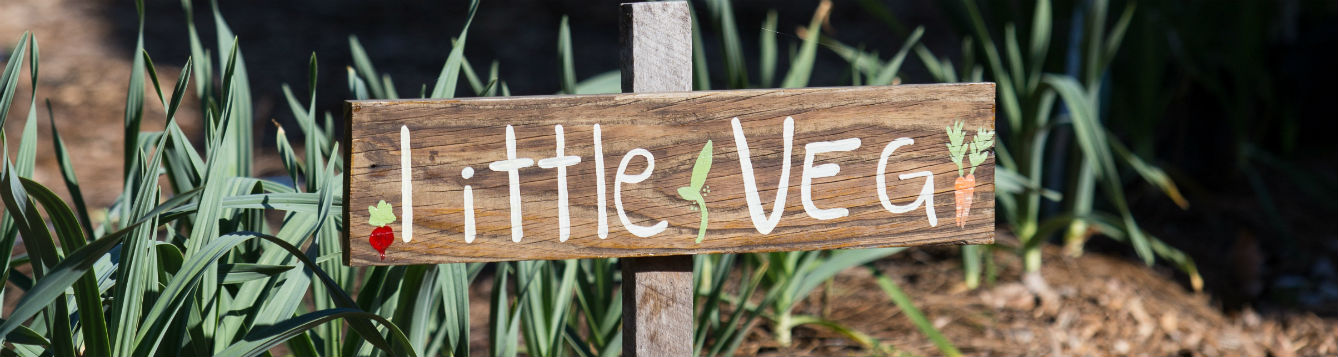 "sign that says, ""little veg"" in a garden"