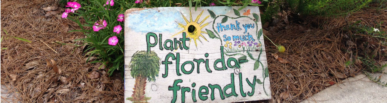 plant florida friendly