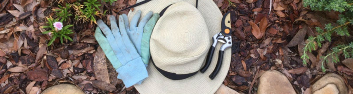 Hat, pruners and gloves in the garden