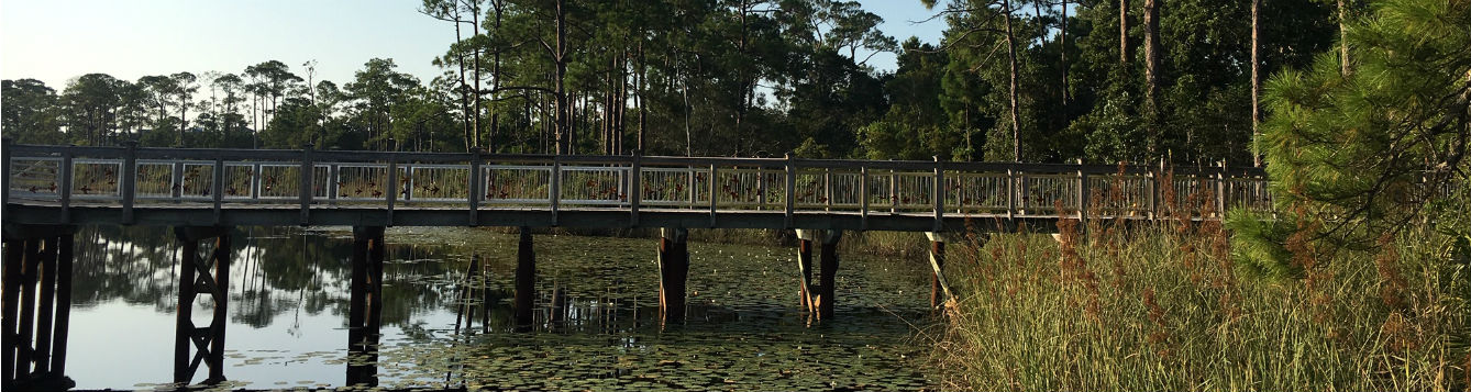 bridge over natural Florida lake