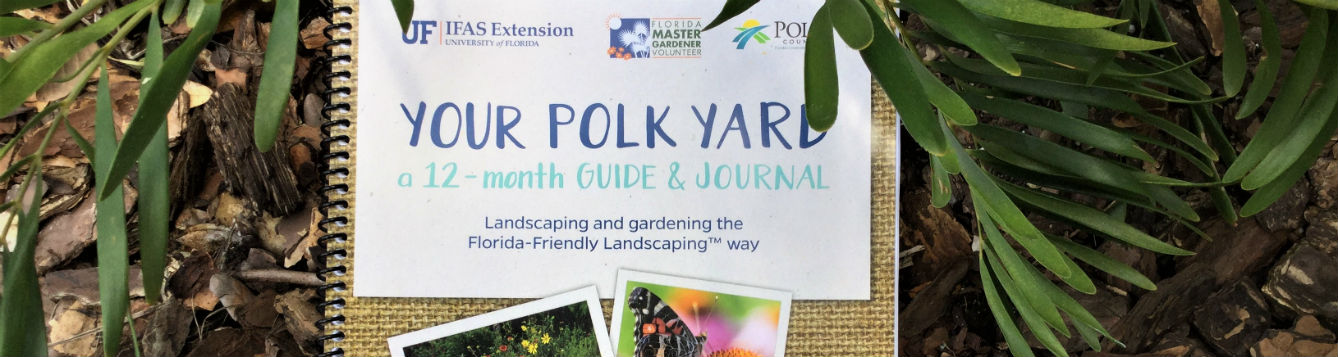 Your Polk Yard, Guide and Journal cover photo