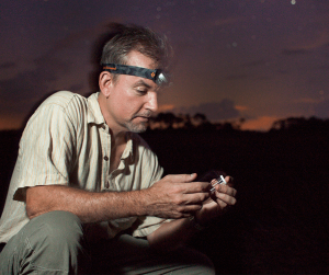 UF Professor Marc Branham searching for fireflies.