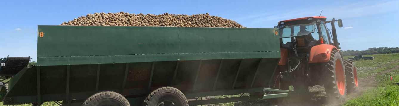 potato wagon full of potatoes