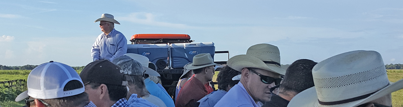 """Attendees at the 2018 South Florida Forage Management Tour and Workshop take a """"hay ride"""" at Longino Ranch"""