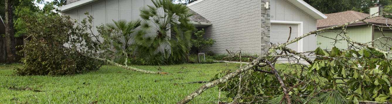 exterior shot of home with downed branches