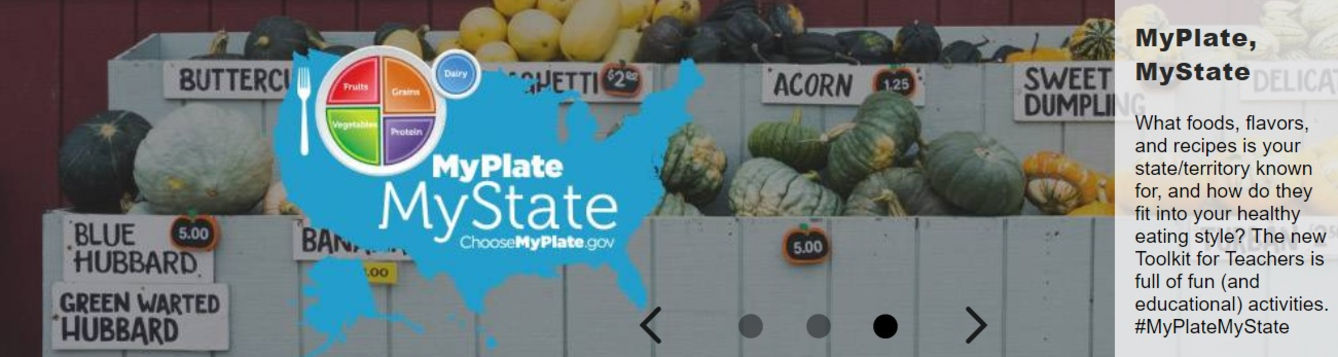 screen shot of choosemyplate.gov (usda site)