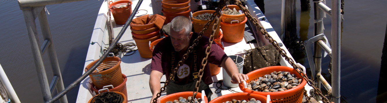 a deckhand works aboard a clam harvesting ship