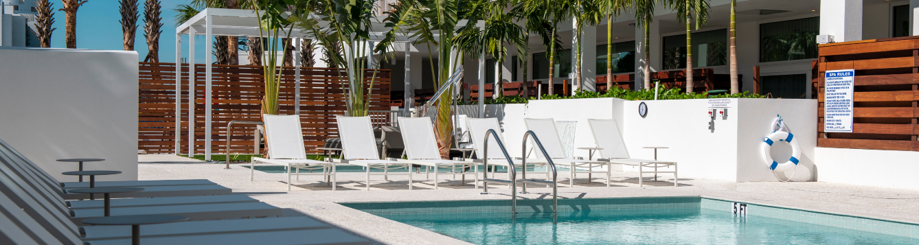 poolside at the modern hotel in sarasota, with chaise lounges ringing the pool and a row of palm trees in the background