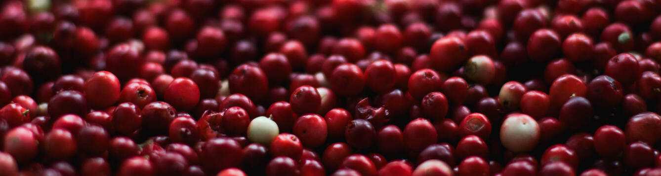 A stockpile of fresh cranberries. [CREDIT: PIxabay.com]