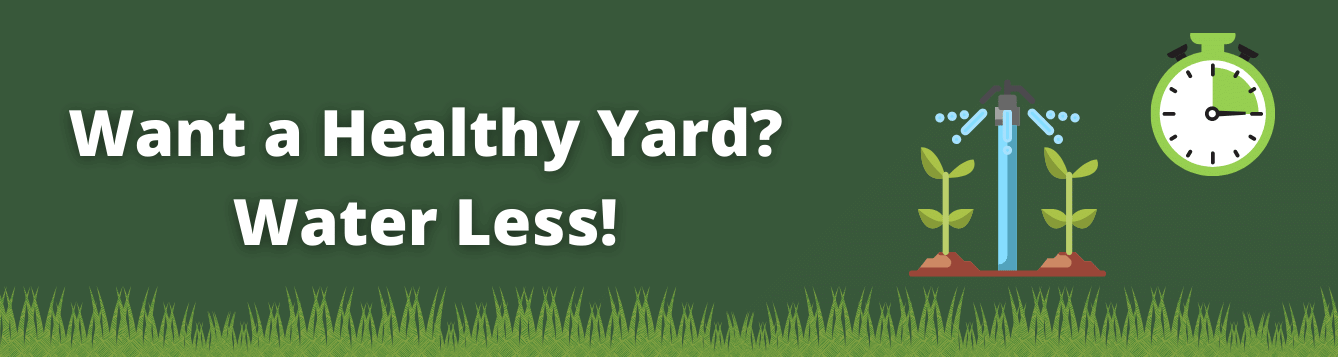 Want a Healthy Yard? Water less! with grass, sprinkler, and timer