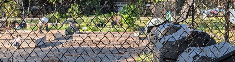 tumblers in community garden