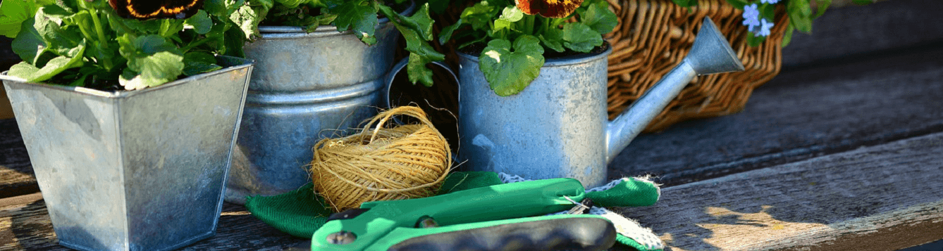 picture of watering can, twine, garden tools, plants