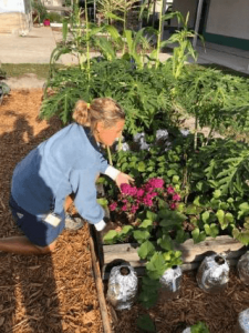 Marie Spoon in the Garden