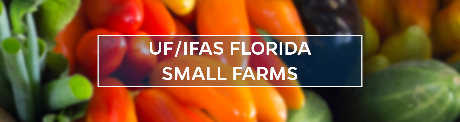 UF/IFAS Florida Small Farms