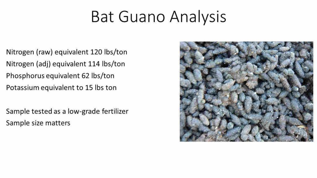 Bats in Bridges - Fertilizer analysis for bat bridge guano in St. Lucie County. Photo credits: K. Gioeli