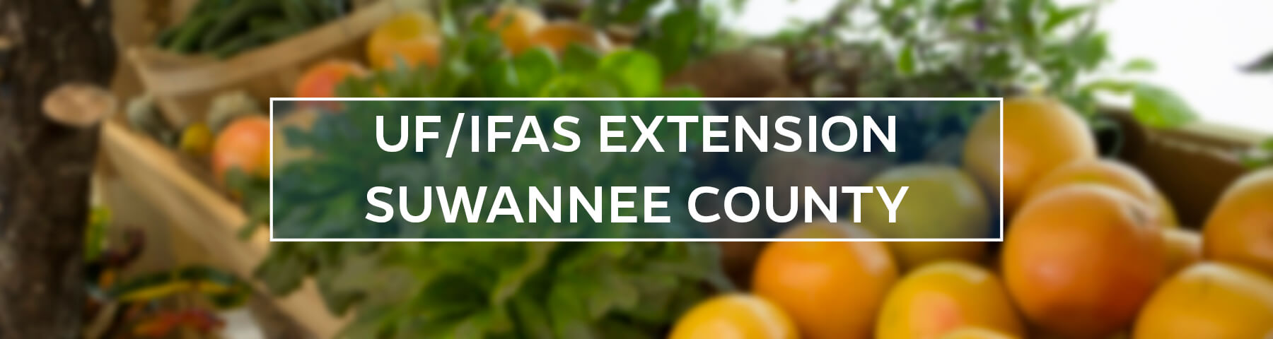 UF/IFAS Extension Suwannee County