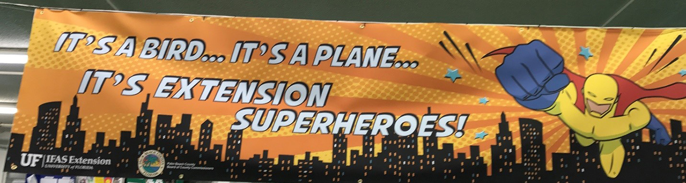 It's a bird, it's a plane, it's Extension superheroes banner