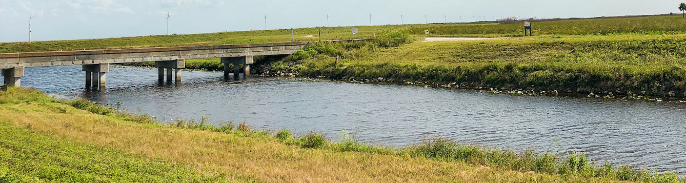 Everglades stormwater treatment area